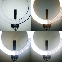 Ring Light Renkler